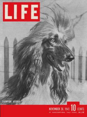 LIFE Magazine November 26