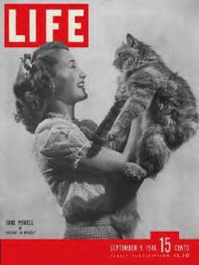 LIFE Magazine September 9