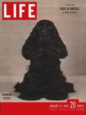 LIFE Magazine January 31