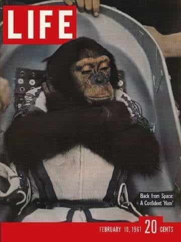 LIFE Magazine February 10