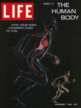LIFE Magazine December 7