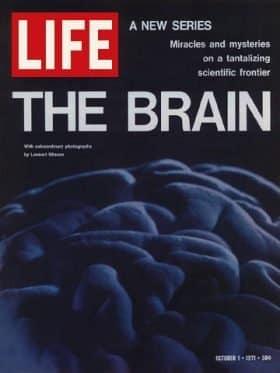 LIFE Magazine October 1
