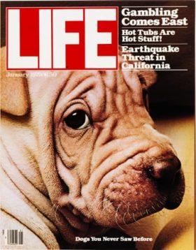 LIFE Magazine January 1979