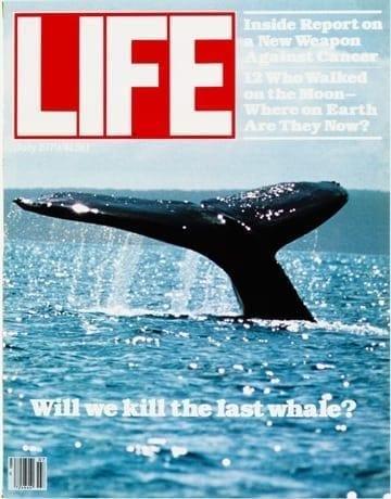 LIFE Magazine July 1979