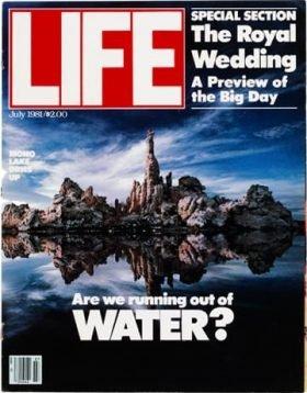 LIFE Magazine July 1981
