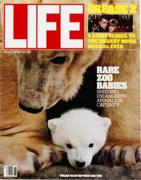 LIFE Magazine June 1982