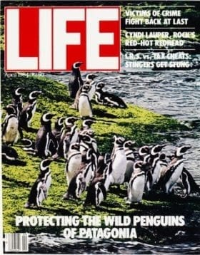 LIFE Magazine April 1984