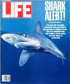 LIFE Magazine August 1991