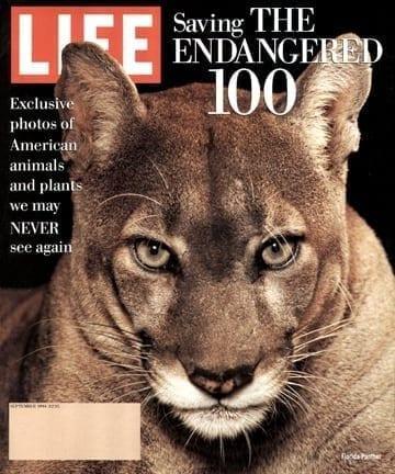 LIFE Magazine September 1994