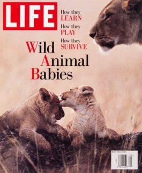 LIFE Magazine May 1995
